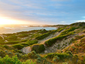 Beachport Conservation Park - Attractions Sydney