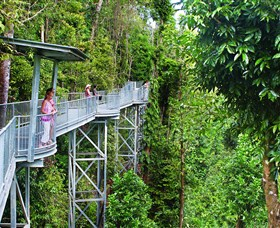 Mamu Tropical Skywalk - Attractions Sydney