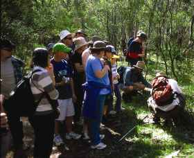 Warrumbungle National Park Discovery Program - Attractions Sydney
