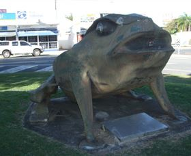 Big Cane Toad - Attractions Sydney