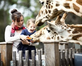 Taronga Western Plains Zoo Dubbo - Attractions Sydney