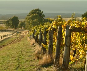 Captains Creek Organic Wines - Attractions Sydney