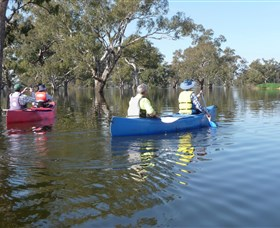 Doodle Cooma Swamp - Attractions Sydney
