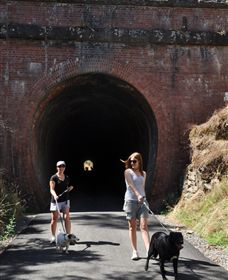 Cheviot Tunnel - Attractions Sydney
