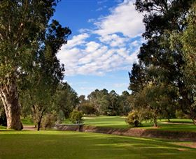 Commercial Golf Course - Attractions Sydney