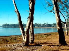 Lake Broadwater Conservation Park - Attractions Sydney
