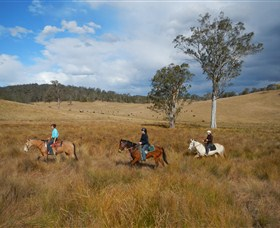 Chapman Valley Horse Riding - Attractions Sydney