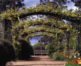 Blue Mountains Botanic Garden - Attractions Sydney