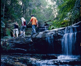 South Lawson Waterfall Circuit - Attractions Sydney