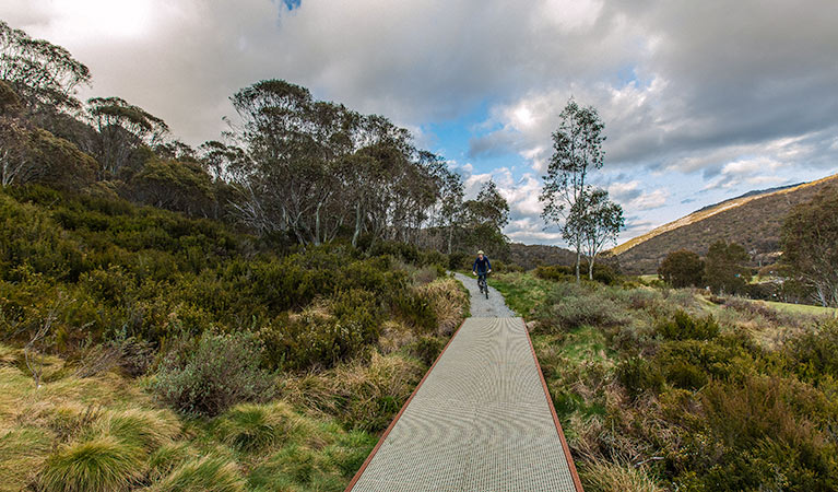 Thredbo Valley track - Attractions Sydney