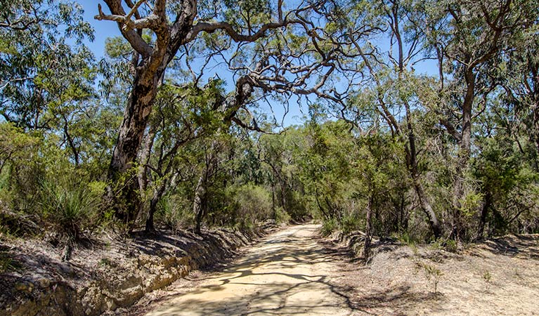 Howes trail - Attractions Sydney