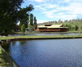 Gaden Trout Hatchery - Attractions Sydney