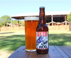 Feral Brewing Company - Attractions Sydney