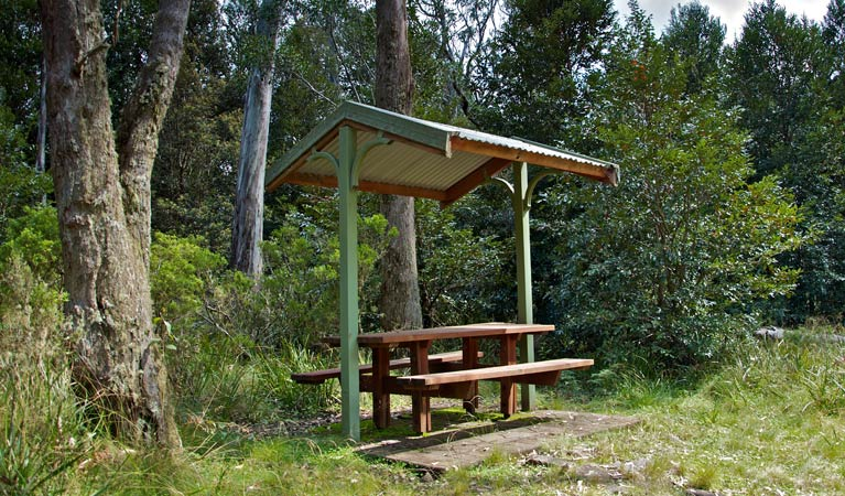 Devils Hole lookout walk and picnic area - Attractions Sydney