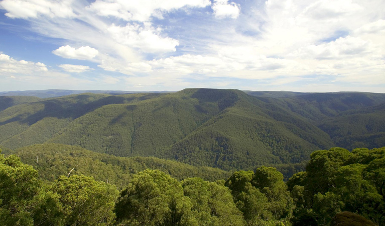 Barrington Tops National Park - Attractions Sydney
