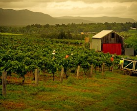 Around Hermitage Wine and Food Trail Hunter Valley - Attractions Sydney