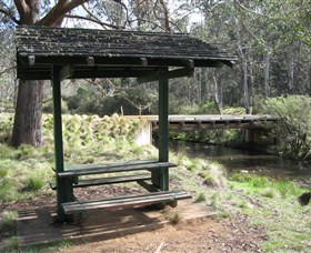 Barrington Tops State Forest - Attractions Sydney