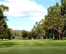 Cooma Golf Club - Attractions Sydney