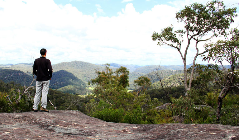 Popran National Park - Attractions Sydney