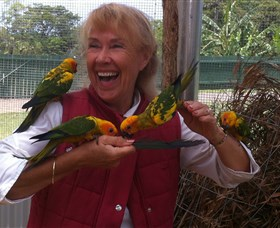 Maleny Botanic Gardens  Bird World - Attractions Sydney