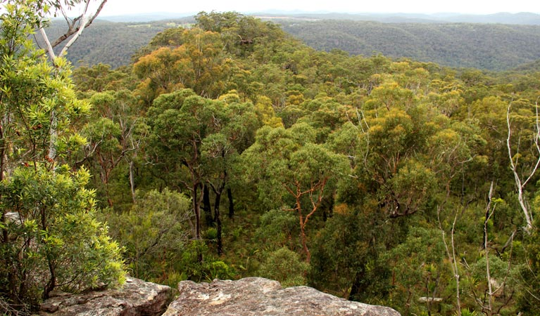 Mount Olive lookout - Attractions Sydney