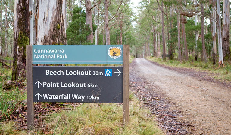 Beech lookout - Attractions Sydney