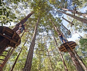 TreeTop Adventure Park Central Coast - Attractions Sydney