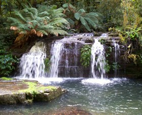 Barrington Tops National Park Walks - Attractions Sydney