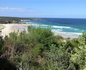 South Pacific Heathland Reserve - Attractions Sydney