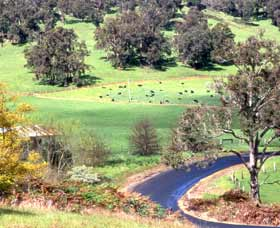 Blackwood River Tourist Drive - Attractions Sydney