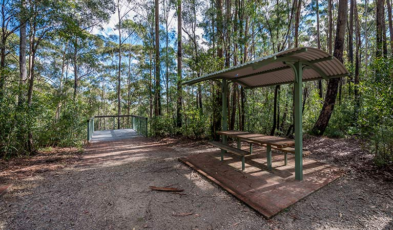 Big Nellie lookout and picnic area - Attractions Sydney