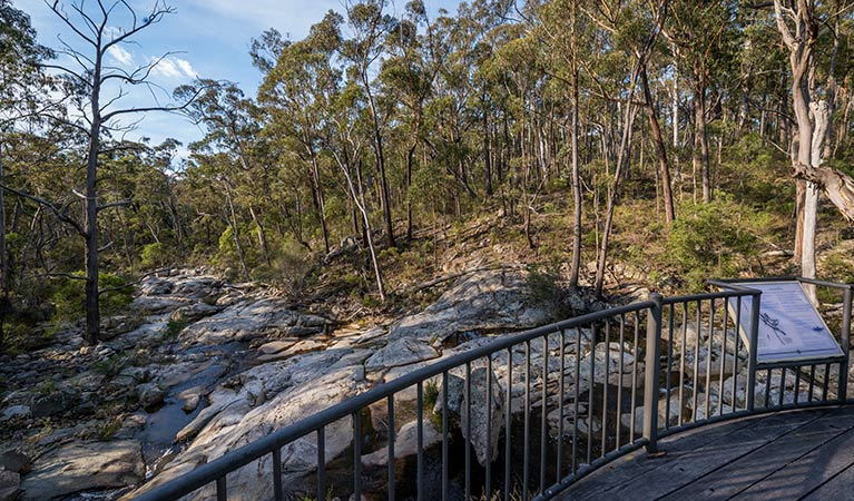 Myanba Gorge walking track - Attractions Sydney