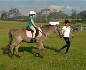 Port Macquarie Horse Riding Centre - Attractions Sydney