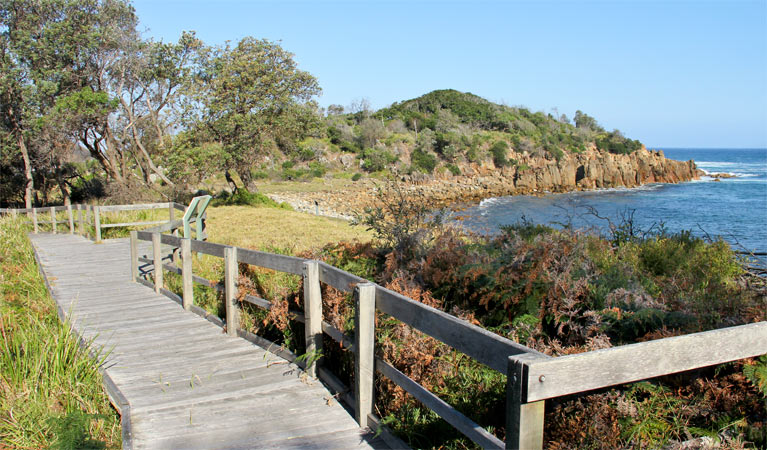 Mimosa Rocks walking track - Attractions Sydney