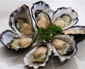 Tathra Oysters - Attractions Sydney