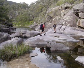 Nadgee Wilderness Walk - Attractions Sydney