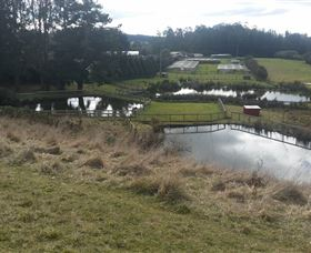Guide Falls Farm - Attractions Sydney
