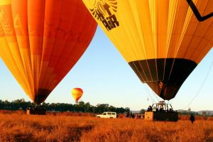 Hot Air Balloon Scenic Rim - Attractions Sydney