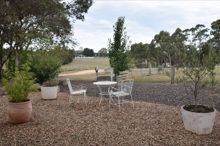 Cygnet Park Country Retreat - Attractions Sydney