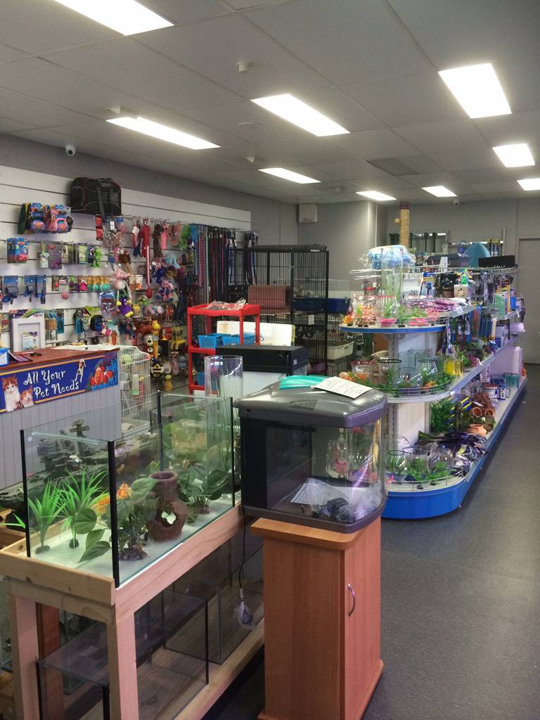 Nambour Pet Shop - Attractions Sydney