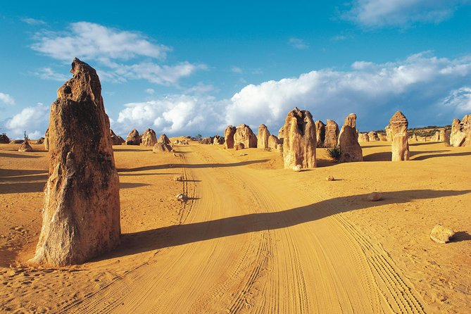 Pinnacles Desert Koalas and Sandboarding 4WD Day Tour from Perth - Attractions Sydney