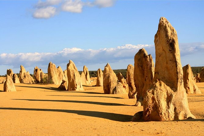 Pinnacles and Yanchep National Park Day Trip from Perth Including Lobster Shack Lunch and Sandboarding - Attractions Sydney