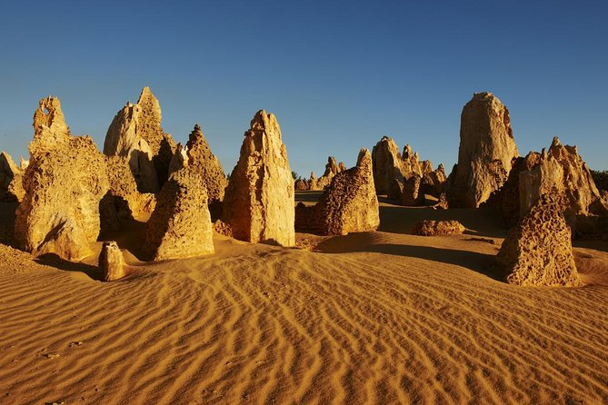 Pinnacles Day Trip from Perth Including Yanchep National Park - Attractions Sydney