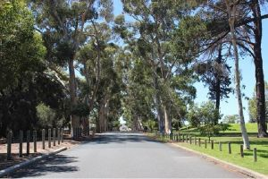 Claremont Heritage Tour from Perth - Attractions Sydney