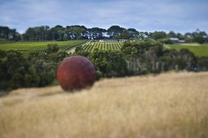 Estate to Plate Montalto Vineyard Gourmet Lunch and Wine-Tasting Tour - Attractions Sydney
