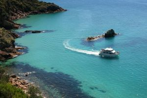 Cape Woolamai Sightseeing Cruise from San Remo - Attractions Sydney