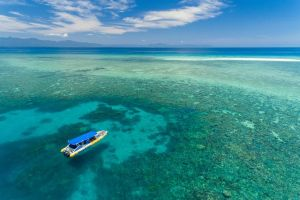 Ocean Safari Great Barrier Reef Experience in Cape Tribulation - Attractions Sydney