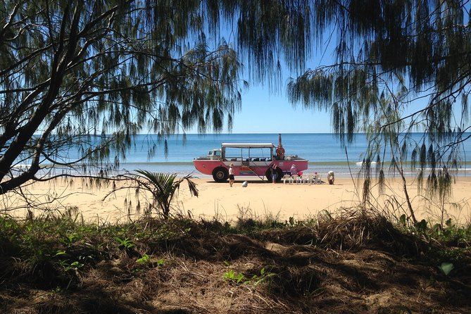 1770 Coastline Tour by LARC Amphibious Vehicle Including Picnic Lunch - Attractions Sydney