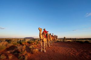 Uluru Small-Group Tour by Camel at Sunrise or Sunset - Attractions Sydney