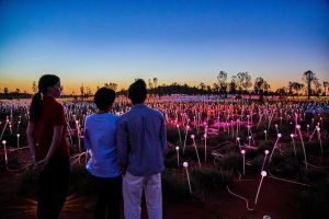 Uluru Field of Light Sunrise Tour - Attractions Sydney